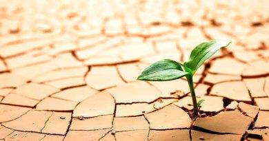Los límites ecológicos del capitalismo