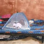 The long-lasting insecticide-treated bed nets(LLINs)