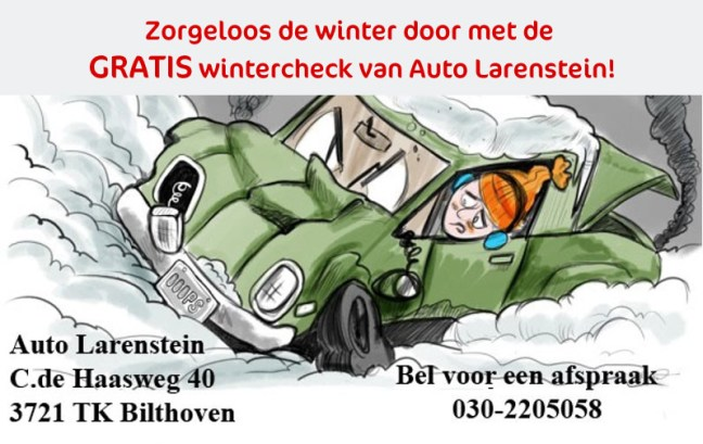 Auto Larenstein Wintercheck
