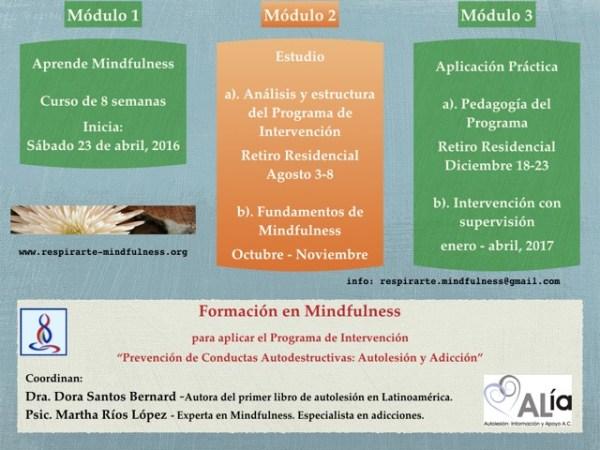 curso-mindfulness-autolesion-mexico