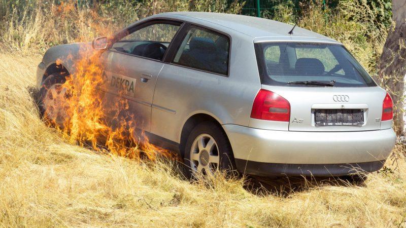 Katalysatorbrand trockene Wiese - Dekra Test
