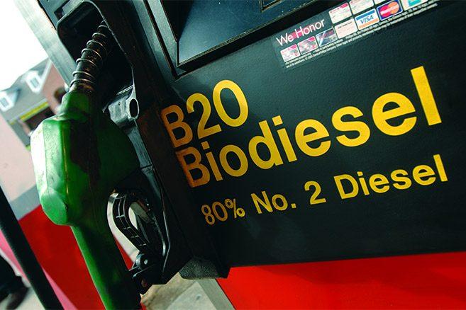 """Résultat de recherche d'images pour """"huile de palme biocarburant"""""""