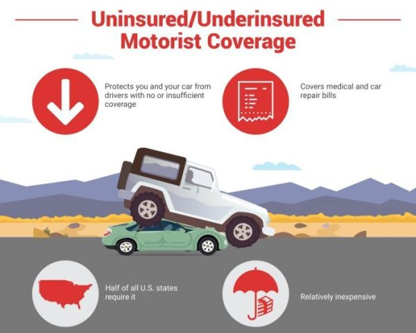 All the Different Types of Car Insurance Coverage ...