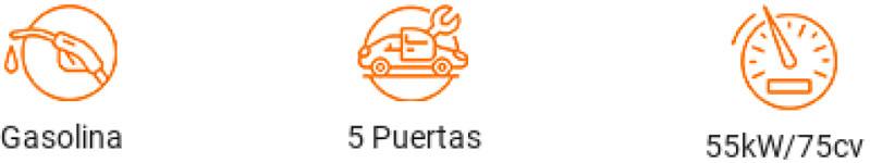 Renting Ford Fiesta características