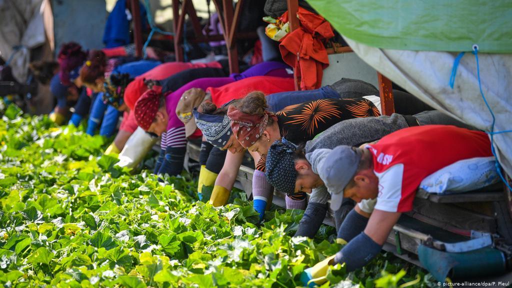 Migration, Rassismus, Grenzregime und der globale Arbeitsmarkt