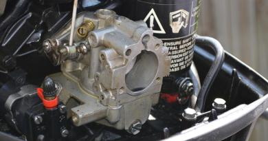 Johnson Carburetor Cleaning 1989 1990 1991 1992 1993 1994 1995 1996 1997 1998 1999 2001 2002 2003 2004 2005