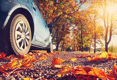 Conducir en otoño