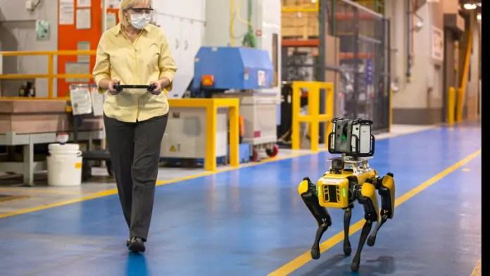 La Ford Motor Company ha due nuove aggiunte per uno stabilimento di produzione nel Michigan. Fluffy e Spot sono robot della Boston Dynamics che si muovono come cani. Progettati per il rilevamento e l'ispezione, possono essere azionati a distanza. Ford utilizzerà questi robot a quattro zampe nel suo impianto di trasmissione di Van Dyke, Michigan. Fluffy e Spot scannerizzeranno l'impianto, documentandolo e aiutando a valutare le esigenze per il futuro riattrezzamento, la costruzione e l'aggiornamento. Ford inizierà a utilizzare Fluffy e Spot all'inizio di agosto 2020. Mentre Fluffy e Spot sono più grandi dei life bot progettati per aiutare le aziende più grandi nei loro compiti, questa Anki Cozmo potrebbe essere un'aggiunta gioiosa alla vostra casa. È molto più piccola dei bot Boston Dynamic, ma ha una doppia personalità.
