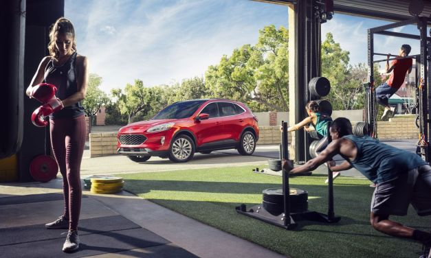 Ford Kuga – Gotowa do skoku