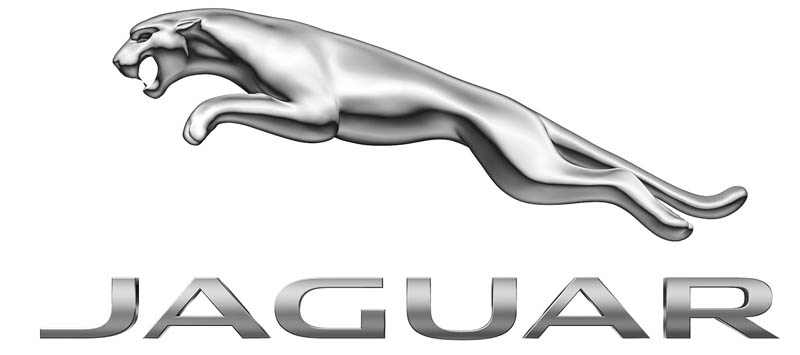 Large Jaguar logo