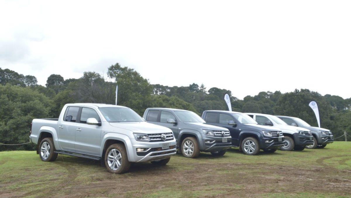 Impulsan AMDA y JATO ventas digitales de automotores