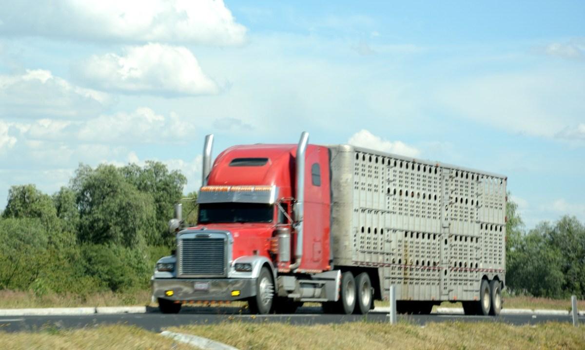 Aumenta 27.9% importación de vehículos pesados usados en noviembre 2020