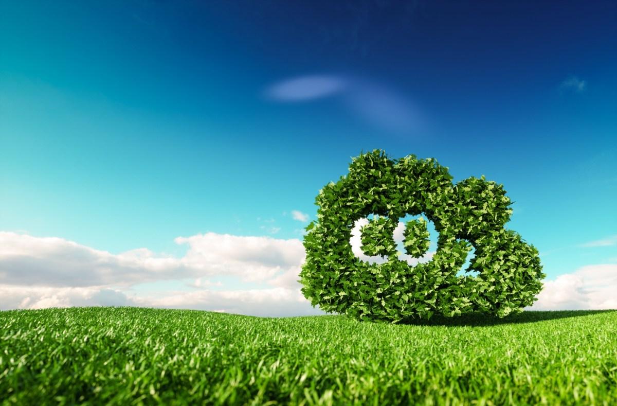 Alcanza Brambles la neutralidad de carbono en sus operaciones