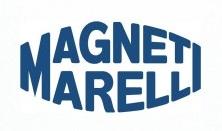 magnetilogo-300x2131