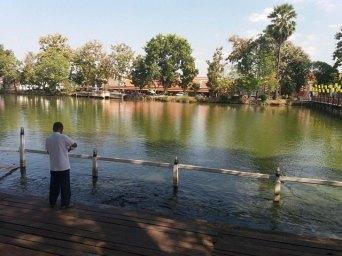 le vieil homme et les poissons à Wat Traphang Thong Lang