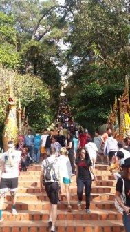 les marches pour quitter Doi Suthep