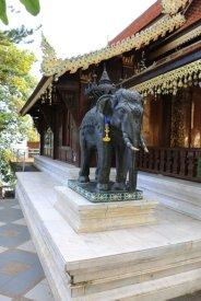 Oh un éléphant (Doi Suthep)