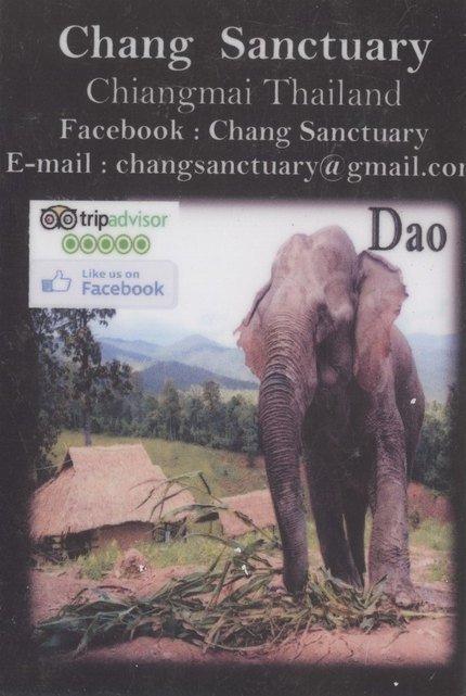 Chang Sanctuary