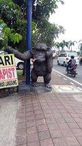 rien de tel qu'une bonne pipe (Kuta Bali)