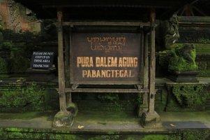 un temple dans Monkey Forest qu'on peut pas visiter (encore un :(