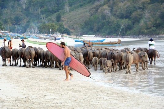 spectacle surréaliste sur la plage de Selong Blanak