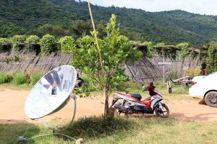 Sothy's ferme biologique cultivant le poivre