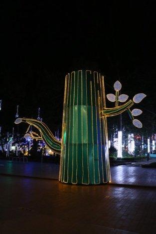 de nuit, sur la place centrale Parque Caldas de Popayàn - l'autre ailleurs en Colombie, une autre idée du voyage