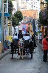 calèche dans la rue à Carthagène des Indes - l'autre ailleurs en Colombie, une autre idée du voyage