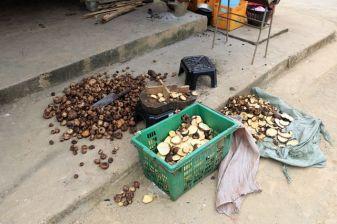 séchage de pommes de terre