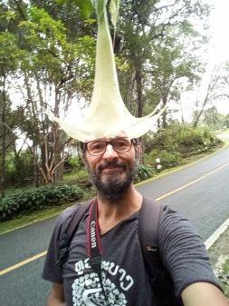 dans le jardin du roi à Doi Suthep près de Chiang Mai - l'autre ailleurs, une autre idée du voyage