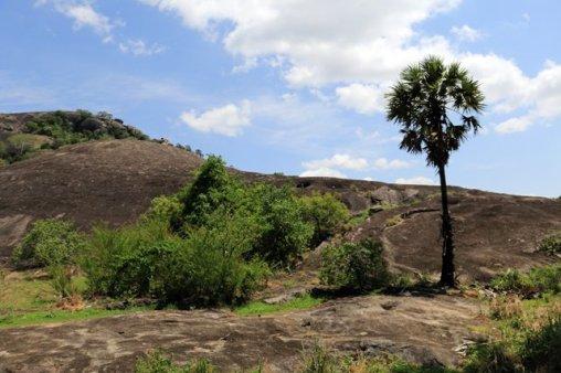 sur le chemin de Dambulla Cave Temple - l'autre ailleurs au Sri-Lanka, une autre idée du voyage