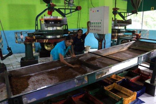 triage manuel du thé dans l'usine de thé, Kadugannawa/Geragama, tout près de Kandy - l'autre ailleurs au Sri-Lanka, une autre idée du voyage