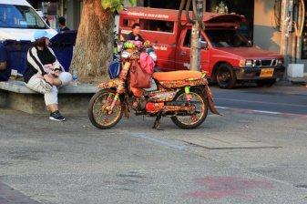 joli scooter à Chiang Mai - l'autre ailleurs au Myanmar (Birmanie) et Thaïlande, une autre idée du voyage