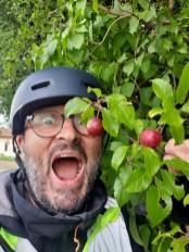 merci les pruniers sauvages - l'autre ailleurs en Vélo, une autre idée du voyage (www.autre-ailleurs.fr)