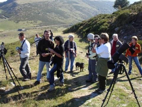 Observation des migrations au col du Prat de Bouc
