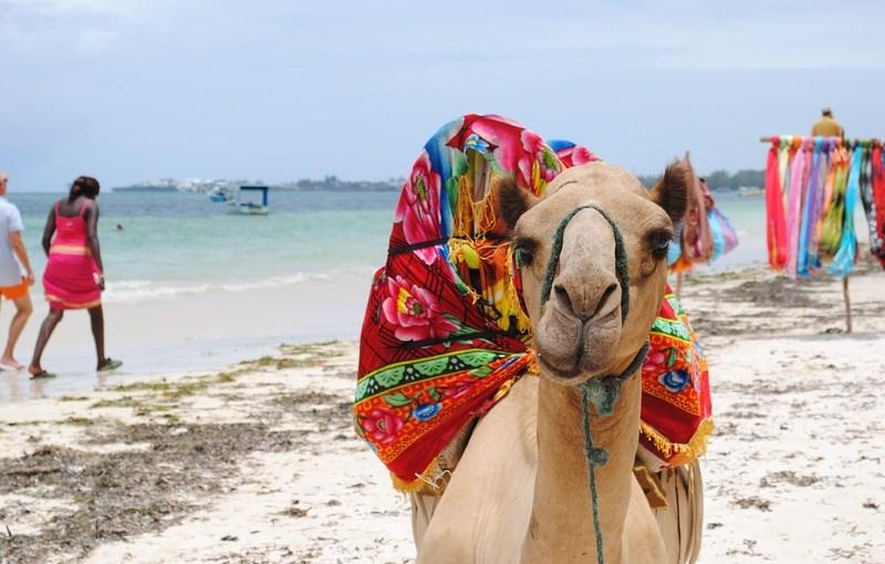 Top 3 des destinations africaines pour un séjour inoubliable