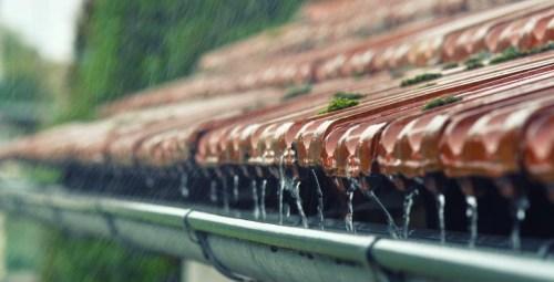 dešťovka dešťová voda