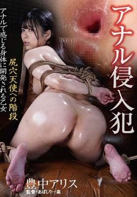 アナル侵入犯 尻穴天使への階段 豊中アリス [BDA-125/bda00125]