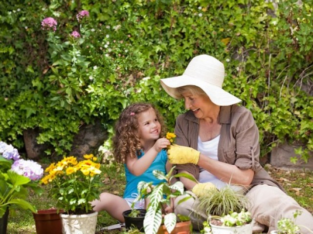 Image result for gardening relieve stress