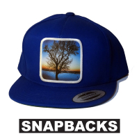 avalon7 snapback hat