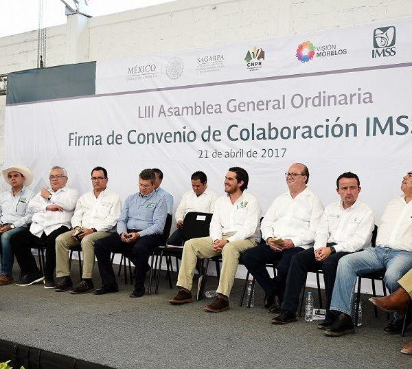 ingenios La Abeja, de Casasano, y Emiliano Zapata, de Zacatepec