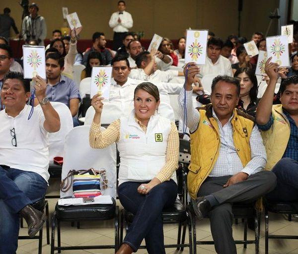 el Séptimo Pleno Extraordinario del VIII Consejo Estatal, encabezado por la dirigente Hortencia Figueroa Peralta