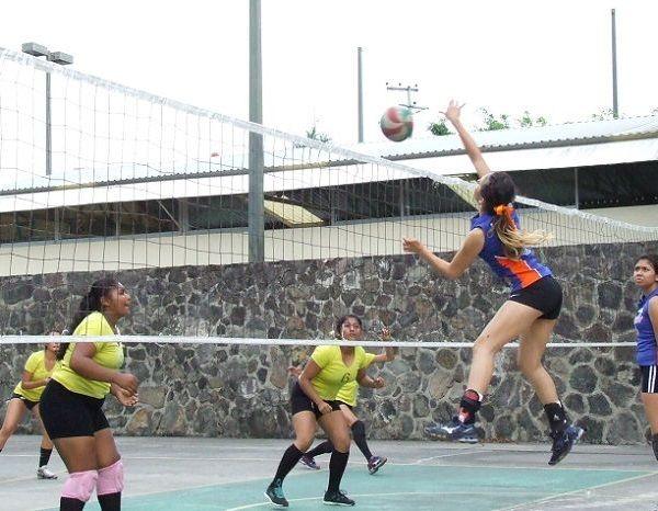 La jornada quince no fue la excepción de la temporada febrero-junio 2018 de la Liga de Voleibol Estudiantil Femenil y Varonil; en la categoría preparatoria femenil Panteras sumó dos triunfos tras derrotar en un primer duelo a Coyotes Zapata con marcador de 25-12 y 25-10 y posteriormente se imponen al CUAM 25-11 y 25-17