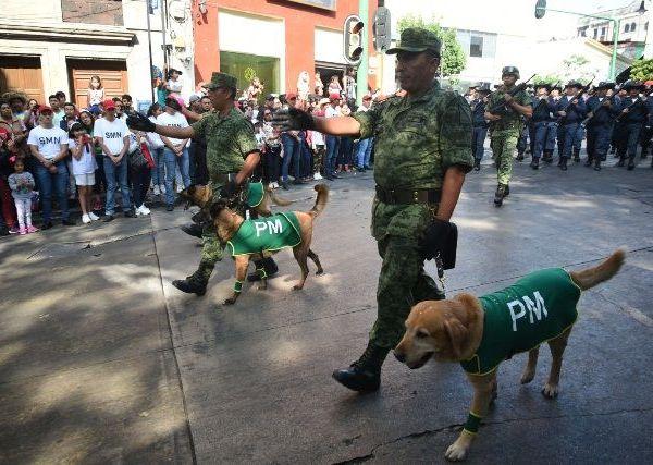 En punto de las 10:00 horas, el Coronel de Infantería Diplomado de Estado Mayor, Arody Salvador Lorenzo, comandante de la columna del desfile, solicitó autorización para arrancar con la emotiva celebración