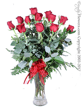 Dozen Long Stem Red Roses Valentines Day Delivery