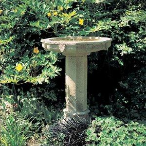 Rêve de jardin jardin bain debout–sont les oiseaux, ocre