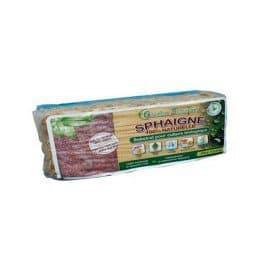 SPHAIGNE DU CHILI – Sachet 150 g