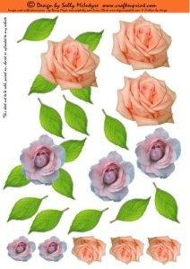 Feuille A4 pour confection de carte de vœux – just 3d flowers roses par Sally McIntyre
