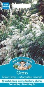 Mr. Fothergill's 14522 Paquet de 30 graines de roseau de Chine