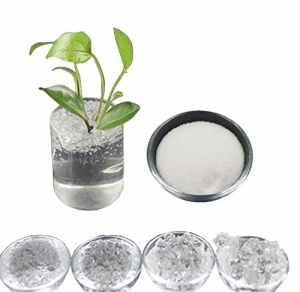 Inception Pro Infinite (1 Kg) Hydrogel Potassium Cristaux Superabsorbant Polymère Polyacrylate Sap pour Créer Superterra pour Jardinage Fleurs Agriculture Cultivation